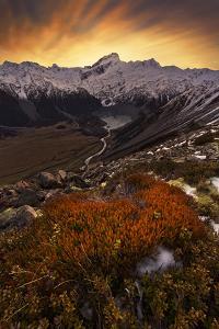 Mount Sefton by Yan Zhang