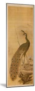 Peacock by Yanagisawa Kien