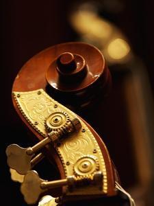 Double Bass Headstock by Yang Liu