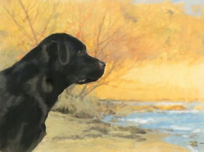 Oil Painting Portrait Of Black Labrador In Autumn by Yarvet