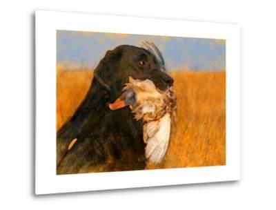 Oil Painting Portrait Of Black Labrador With Duck