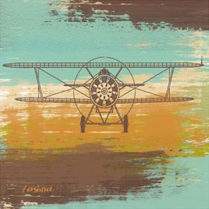 Biplane I by Yashna