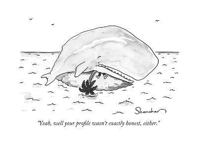 """""""Yeah, well your profile wasn't exactly honest, either."""" - New Yorker Cartoon-Danny Shanahan-Premium Giclee Print"""