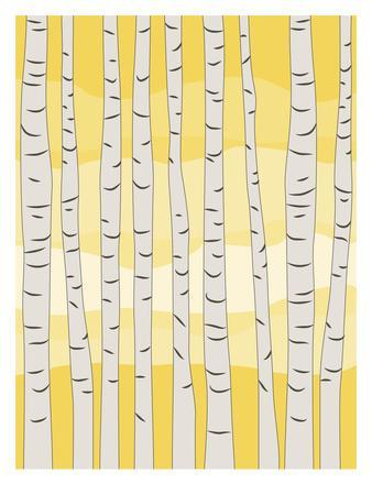 https://imgc.artprintimages.com/img/print/yellow-birch-trees_u-l-f8c36p0.jpg?p=0