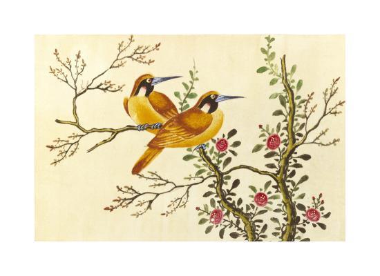 Yellow Birds On Branch--Premium Giclee Print