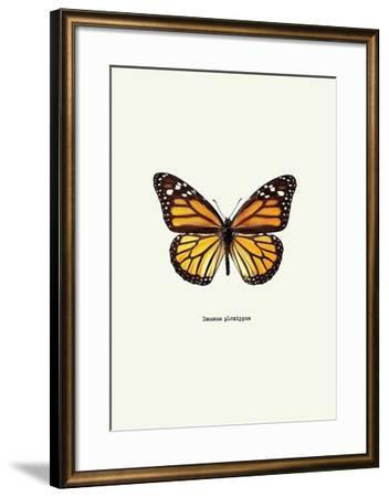 Yellow Butterfly-GraphINC-Framed Art Print