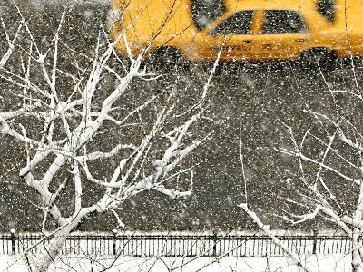 Yellow cab on Park Avenue in a snowstorm-Bo Zaunders-Photographic Print