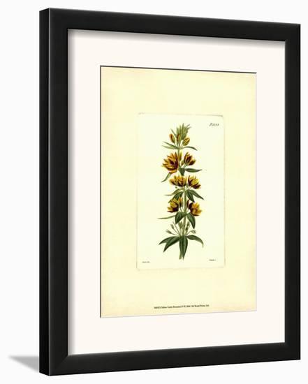 Yellow Curtis Botanical IV--Framed Art Print