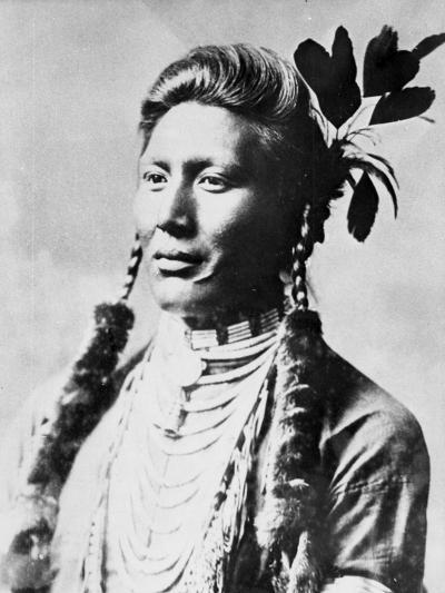 Yellow Dog, North American Indian, C1885-90--Giclee Print
