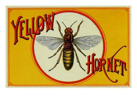 Yellow Hornet Brand Cigar Box Label-Lantern Press-Art Print