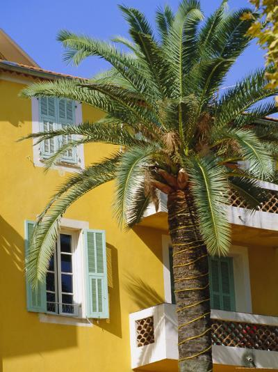 Yellow House and Palm Tree, Villefranche Sur Mer, Cote d'Azur, Provence, France, Europe-John Miller-Photographic Print