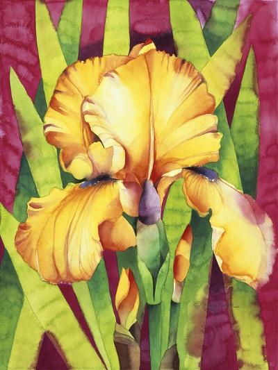 Yellow Iris with Maroon Back-Mary Russel-Giclee Print