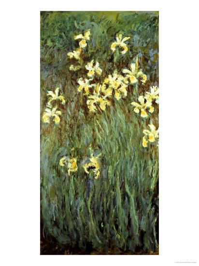 Yellow Irises-Claude Monet-Giclee Print