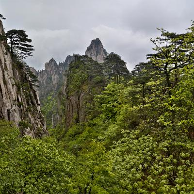 Yellow Mountains a UNESCO World Heritage Site-Darrell Gulin-Photographic Print