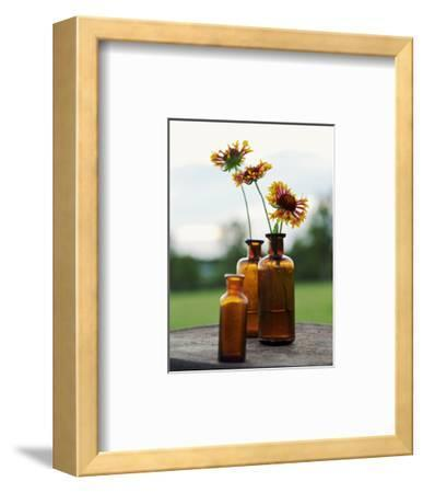 Yellow Orange Flowers in Dark Glass Vases
