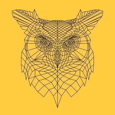 https://imgc.artprintimages.com/img/print/yellow-owl-mesh_u-l-pw4f2x0.jpg?p=0