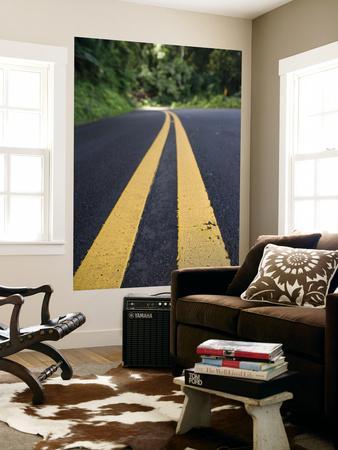 https://imgc.artprintimages.com/img/print/yellow-road-markings-maui-hawaii_u-l-pfgwta0.jpg?p=0