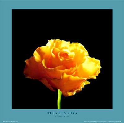 Yellow Rose-Mina Selis-Art Print