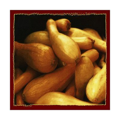 Yellow Squash-Harold Silverman-Giclee Print