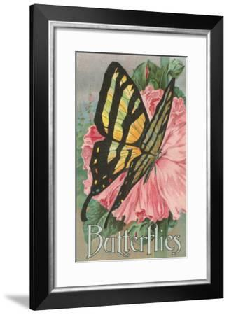 Yellow Swallowtail on Hollyhocks--Framed Art Print