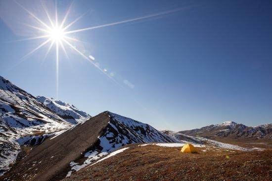 Yellow Tent And Sunstar-Lindsay Daniels-Photographic Print