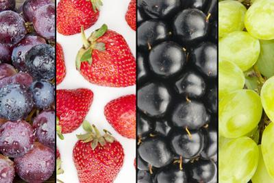 Collage of Four Summer Fruits by YellowPaul