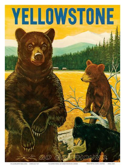 Yellowstone Go Greyhound c.1960s--Art Print