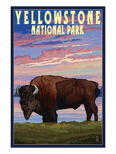 Yellowstone National Park - Bison and Sunset-Lantern Press-Art Print