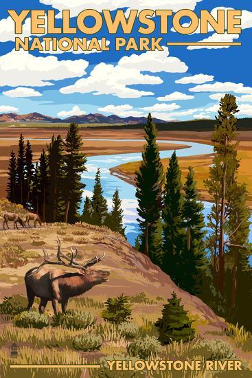 Yellowstone National Park - Yellowstone River and Elk-Lantern Press-Art Print