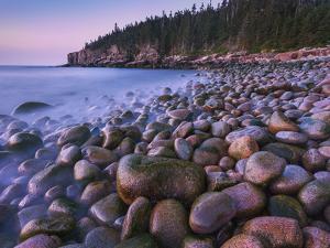 Maine Acadia by Yiming Hu