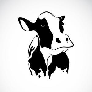 Vector Image of an Cow by yod67