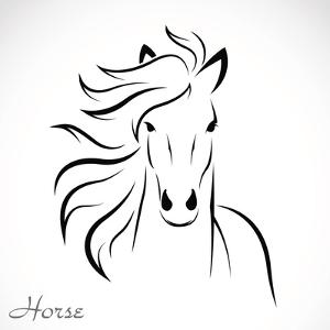 Vector Image of an Horse by yod67