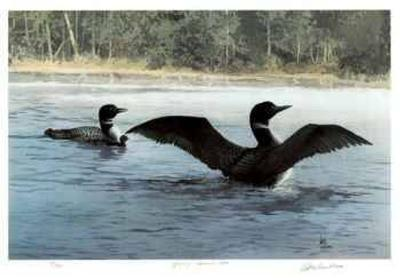 Yodeling - Common Loon-Carl Arlen-Limited Edition