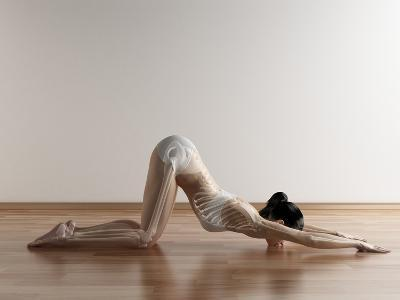 Yoga, Artwork-SCIEPRO-Photographic Print
