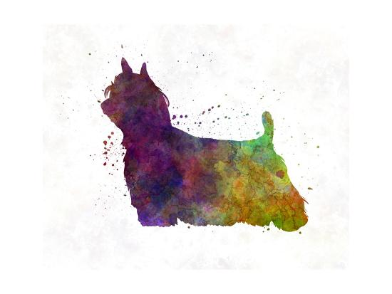 Yorkshire Terrier Long Hair in Watercolor-paulrommer-Art Print