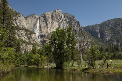 Yosemite Falls in Spring-Richard T Nowitz-Photographic Print