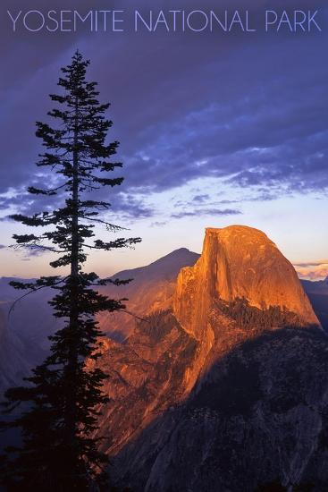 Yosemite National Park, California - Half Dome and Pine Tree-Lantern Press-Art Print