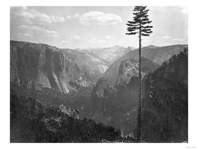 Yosemite National Park, Yosemite Valley Photograph - Yosemite, CA-Lantern Press-Art Print