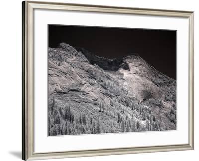 Yosemite National Park-Carol Highsmith-Framed Photo