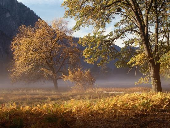 Yosemite Valley in Fall Foliage-Craig Lovell-Photographic Print