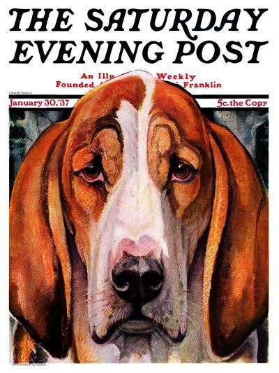 """""""You Ain't Nothing But a Hounddog,"""" Saturday Evening Post Cover, January 30, 1937-Paul Bransom-Giclee Print"""