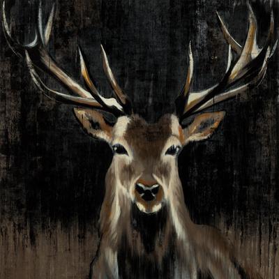 https://imgc.artprintimages.com/img/print/young-buck_u-l-f7zmvc0.jpg?p=0