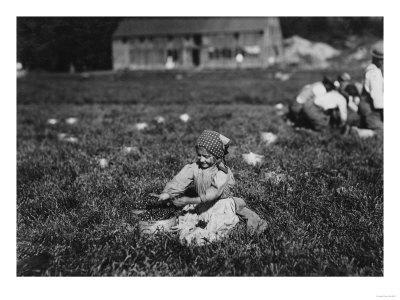 https://imgc.artprintimages.com/img/print/young-girl-picking-cranberries-photograph-eldridge-bog-ma_u-l-q1gnuxw0.jpg?p=0