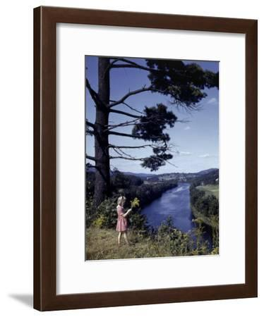 Young Girl Picks Goldenrod Growing on Bluff Above Connecticut River-B^ Anthony Stewart-Framed Photographic Print