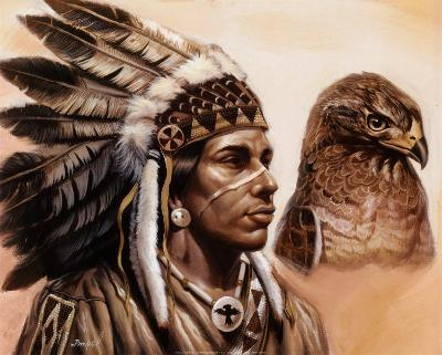 Young Hawk-Gary Ampel-Art Print