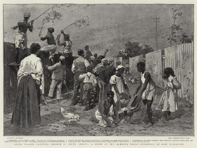 Young Malays Catching Locusts in South Africa-Frederic De Haenen-Giclee Print