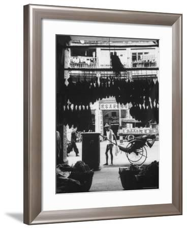 Young Man Standing in Front of a Herbs and Fish Market Displaying Racks of Fish-Howard Sochurek-Framed Photographic Print