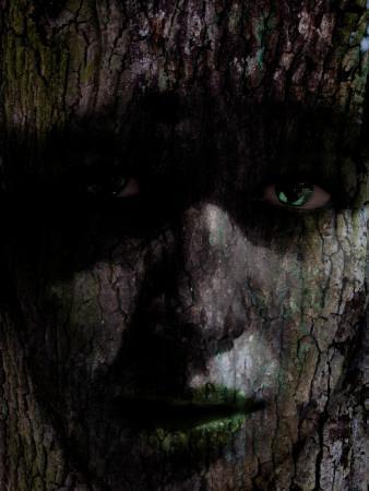 https://imgc.artprintimages.com/img/print/young-nature_u-l-pyz4x00.jpg?p=0