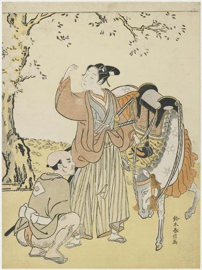 Young Samurai Viewing Cherry Blossoms as a Mitate of Prince Kaoru, C. 1767-Suzuki Harunobu-Giclee Print