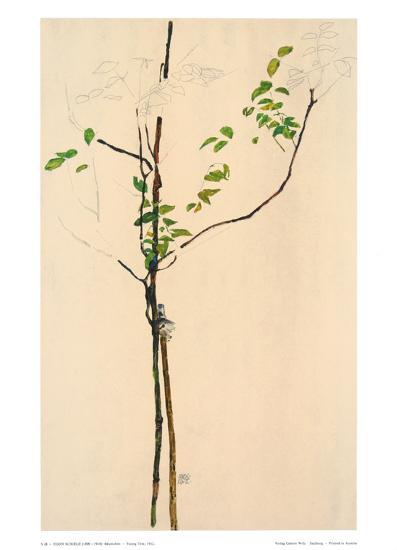 Young Tree-Egon Schiele-Collectable Print